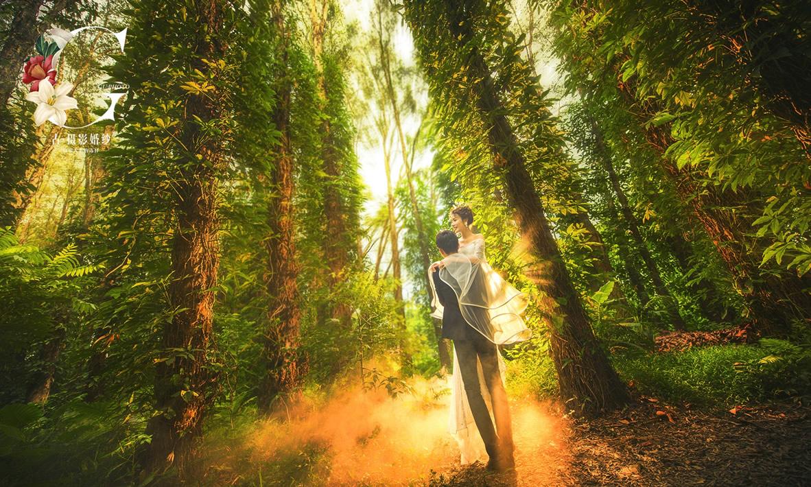 华南植物园【童话森林】 - 拍摄地 - 广州婚纱摄影-广州古摄影官网